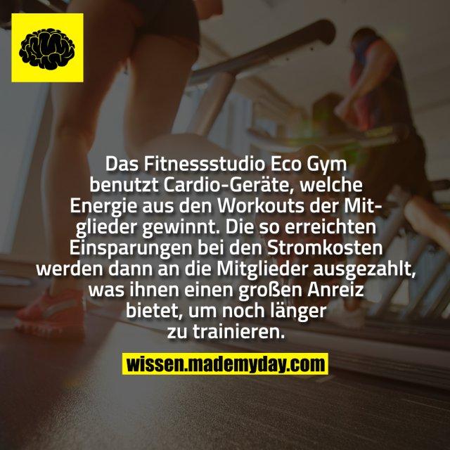 Das Fitnessstudio Eco Gym benutzt Cardio-Geräte, welche Energie aus den Workouts der Mitglieder gewinnt. Die so erreichten Einsparungen bei den Stromkosten werden dann an die Mitglieder ausgezahlt, was ihnen einen großen Anreiz bietet, um noch länger zu trainieren.