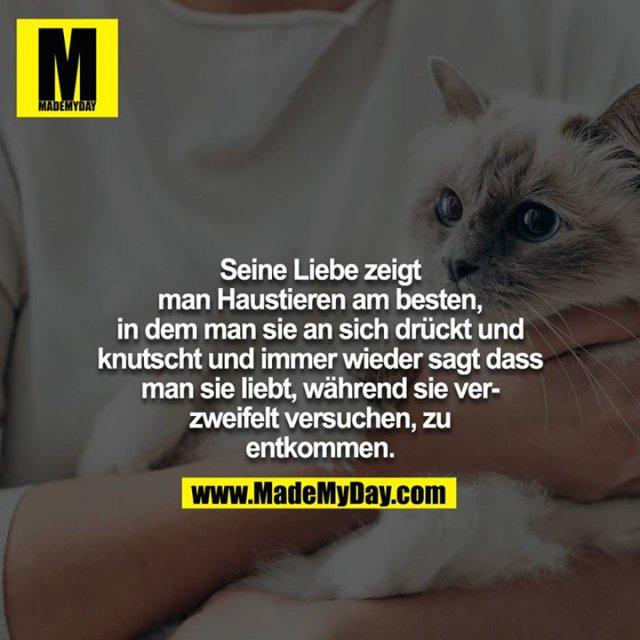 Seine Liebe zeigt man Haustieren am besten, in dem man sie an sich drückt und knutscht und immer wieder sagt dass man sie liebt, während sie verzweifelt versuchen, zu entkommen.