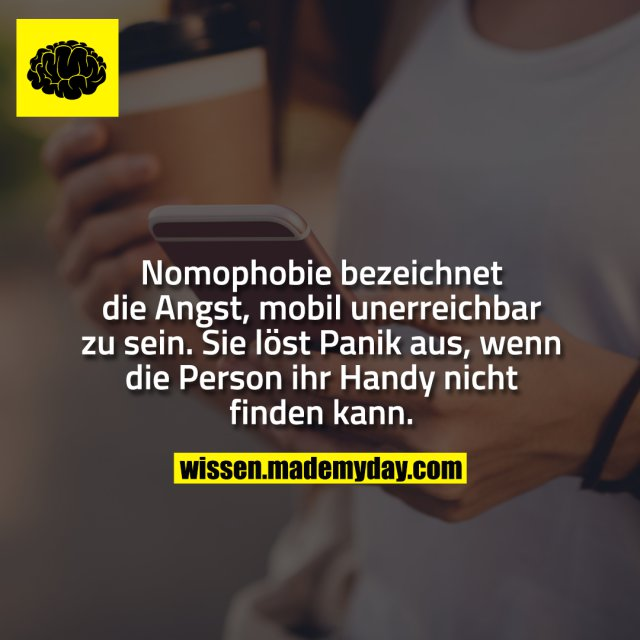 Nomophobie bezeichnet die Angst, mobil unerreichbar zu sein. Sie löst Panik aus, wenn die Person ihr Handy nicht finden kann.