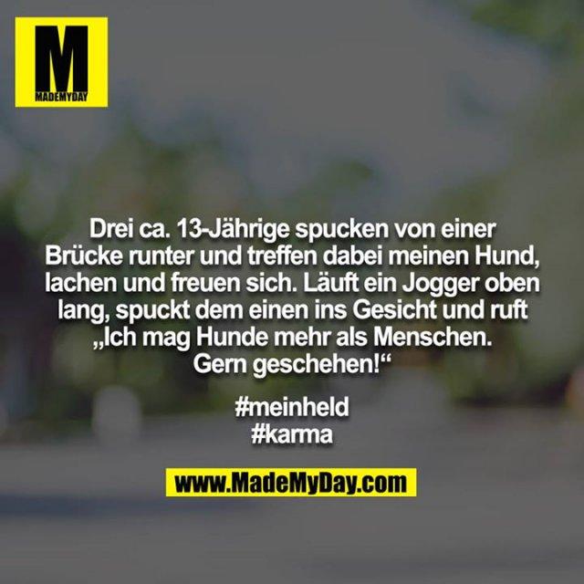 """Drei ca. 13-Jährige spucken von einer Brücke runter und treffen dabei meinen Hund, lachen und freuen sich. Läuft ein Jogger oben lang, spuckt dem einen ins Gesicht und ruft """"Ich mag Hunde mehr als Menschen. Gern geschehen!""""<br /> <br /> #meinheld<br /> #karma"""