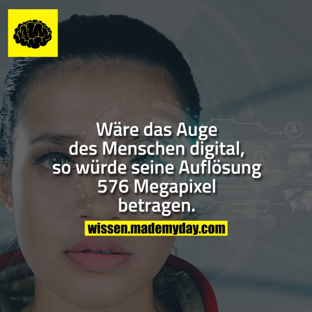 Wäre das Auge des Menschen digital, so würde seine Auflösung 576 Megapixel betragen.