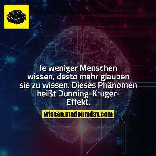 Je weniger Menschen wissen, desto mehr glauben sie zu wissen. Dieses Phänomen heißt Dunning-Kruger-Effekt.