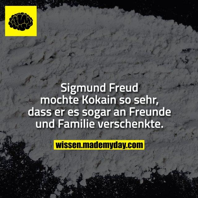 Sigmund Freud mochte Kokain so sehr, dass er es sogar an Freunde und Familie verschenkte.