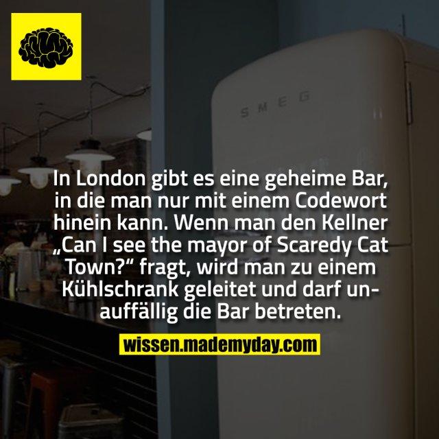 """In London gibt es eine geheime Bar, in die man nur mit einem Codewort hinein kann. Wenn man den Kellner """"Can I see the mayor of Scaredy Cat Town?"""" fragt, wird man zu einem Kühlschrank geleitet und darf unauffällig die Bar betreten."""