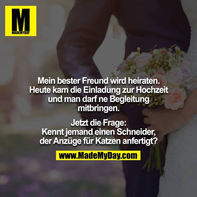Mein bester Freund wird heiraten Made My Day