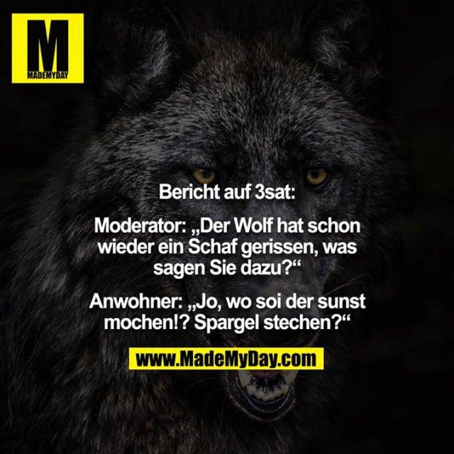 """Bericht auf 3sat:<br /> <br /> Moderator: """"Der Wolf hat schon wieder ein Schaf gerissen, was sagen Sie dazu?""""<br /> <br /> Anwohner: """"Jo, wo soi der sunst mochen!? Spargel stechen?"""""""