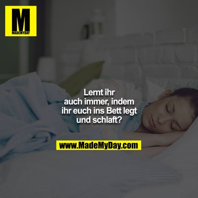 Lernt ihr auch immer, indem ihr euch ins Bett legt und schlaft?