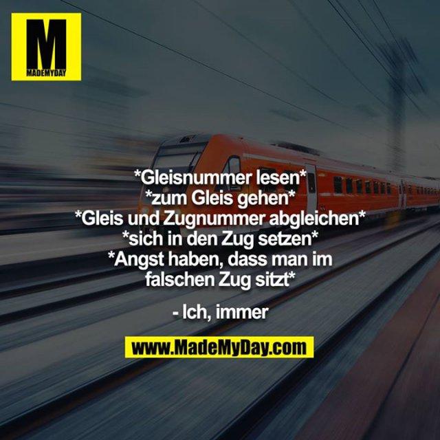 *Gleisnummer lesen*<br /> *zum Gleis gehen*<br /> *Gleis und Zugnummer abgleichen*<br /> *sich in den Zug setzen*<br /> *Angst haben, dass man im falschen Zug sitzt*<br /> <br /> - Ich, immer