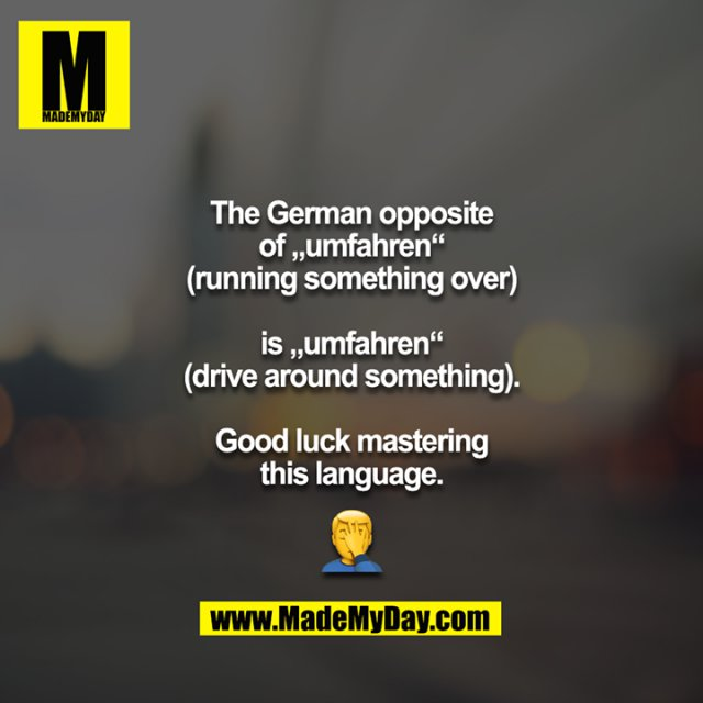 """The German opposite of """"umfahren""""<br /> (running something over)<br /> <br /> is """"umfahren""""<br /> (drive around something).<br /> <br /> Good luck mastering this language.<br /> <br /> 🤦"""