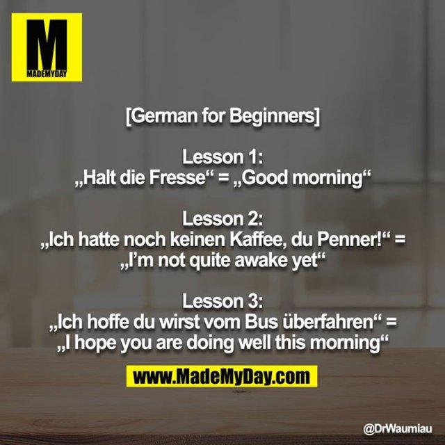 "[German for Beginners]<br /> <br /> Lesson 1:<br /> ""Halt die Fresse"" = ""Good morning""<br /> <br /> Lesson 2:<br /> ""Ich hatte noch keinen Kaffee, du Penner!"" = ""I'm not quite awake yet""<br /> <br /> Lesson 3:<br /> ""Ich hoffe du wirst vom Bus überfahren"" = ""I hope you are doing well this morning"""