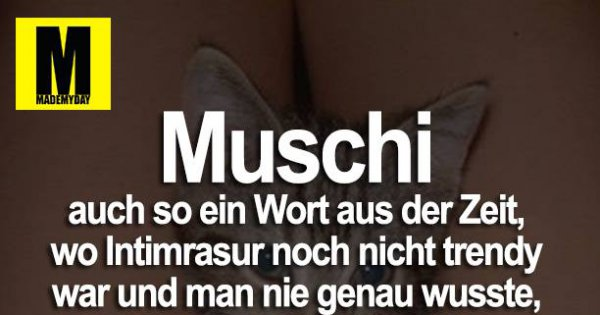 Muschi Auch So Ein Made My Day